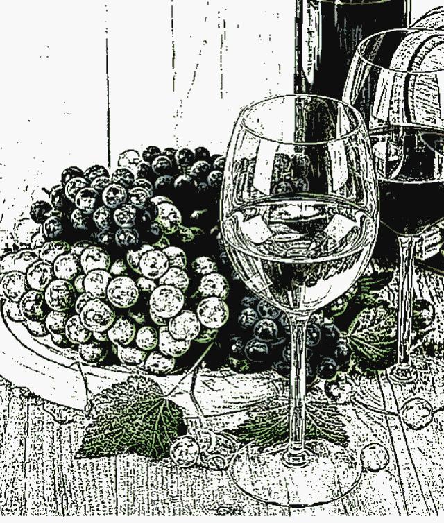 Kasna berba Sauvignon blanc Zdolc odlikuju slkadni prirodni šećeri i zadodljivost ekološkog polusuhog vina
