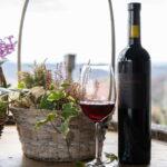 Kušaona je idealna za družennja i razgovore uz čašu dobre graševine ili sauvignona