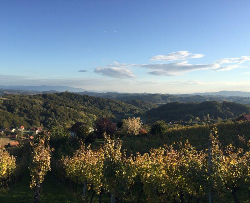 Pogled iz Vinograda Zdolc na Zagorje