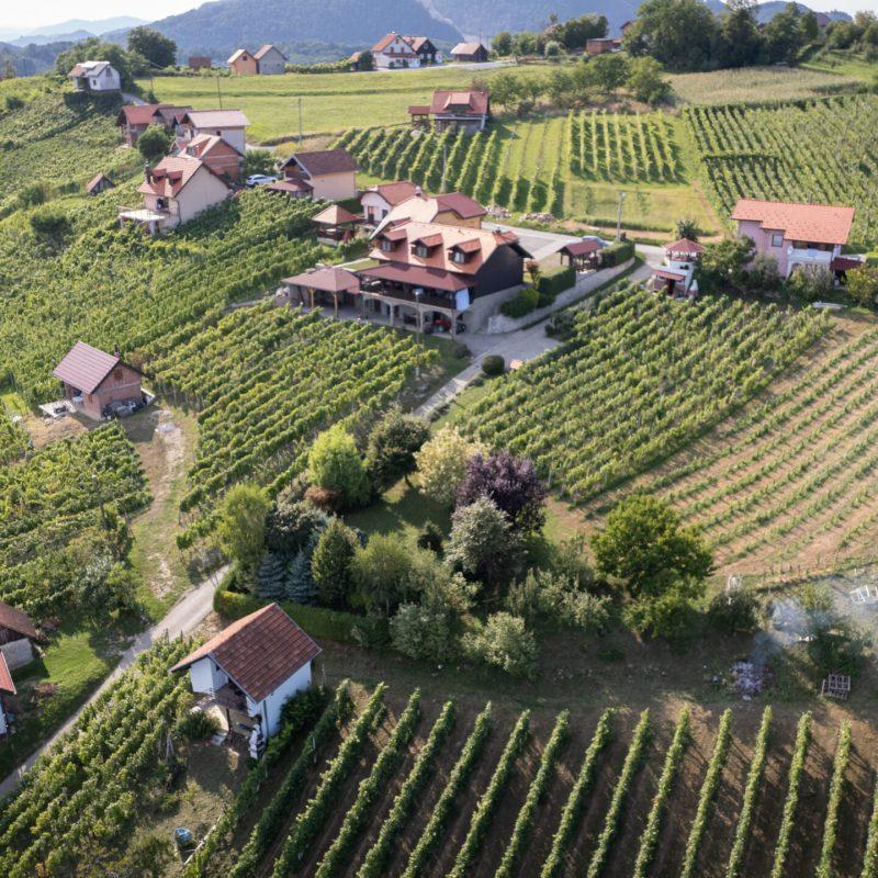 Pozicija naših vinograda omogućuju dobar mikroklimatski položaj
